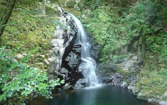 赤目四十八滝の赤目五瀑「不動滝」です。