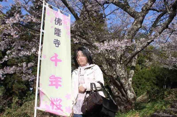 『佛隆寺の千年桜』です。