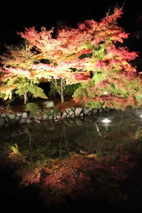 水鏡に映し出される紅葉です。