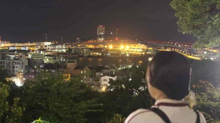 千島公園の展望台より眺める夜景です。