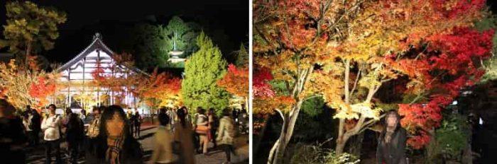 鶴寿台と若王寺山の中腹に建つ多宝塔です。
