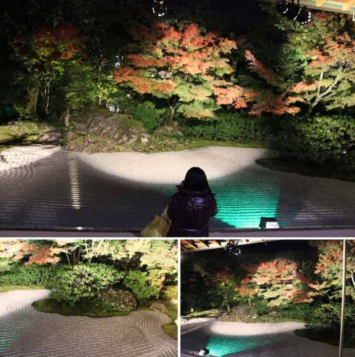 『圓徳院』の『南庭』の景色です。