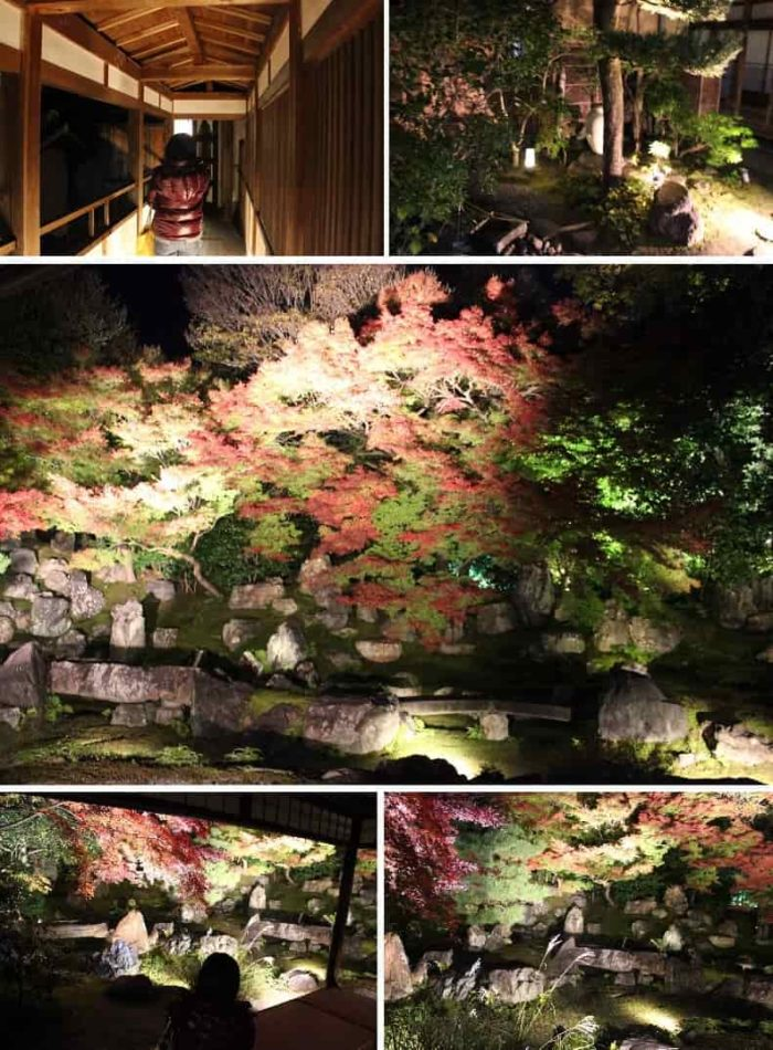 『圓徳院』の『北庭』の景色です。