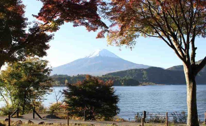 紅葉シーズンに望む「富士山」です。