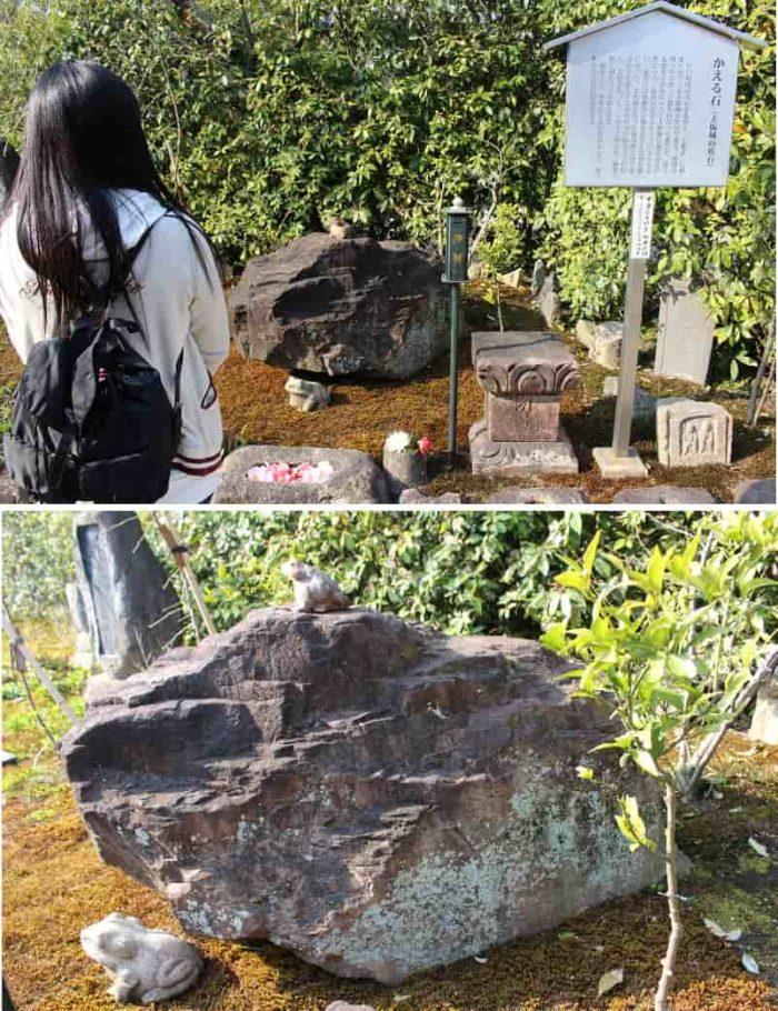 太閤の愛した『かえる石』です。