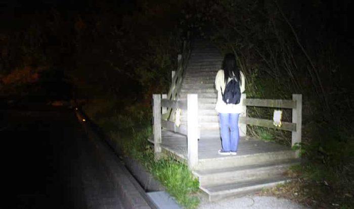 展望スペースに続く木製階段です。