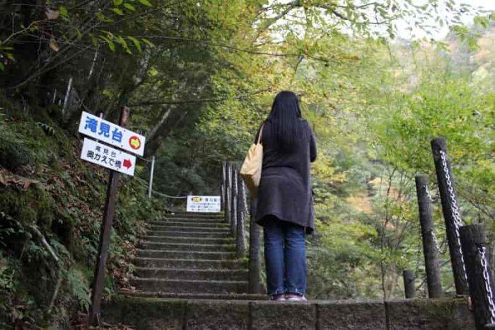 滝見台か奥かえで橋に向かう分岐点です。