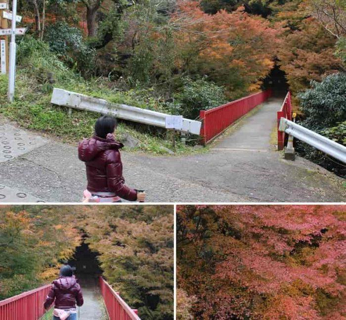 枚岡公園のシンボル『豊浦橋』です。