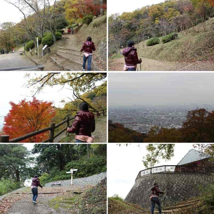 額田山展望台に向けて歩き進めます。
