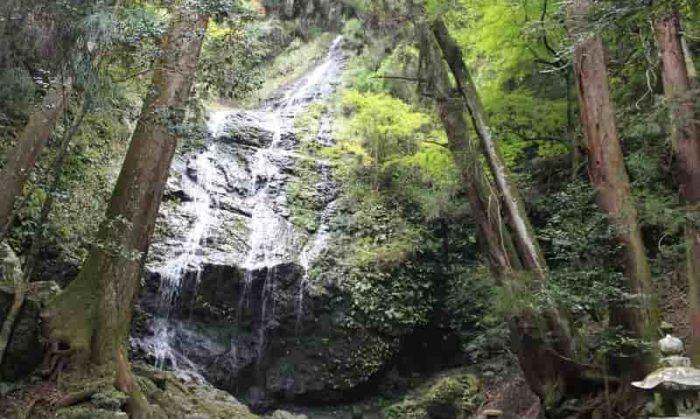佐用町随一の名瀑「飛龍の滝」です。