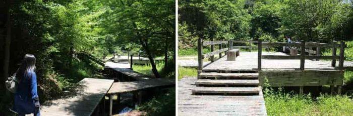 ウッドデッキの『八ツ橋』です。