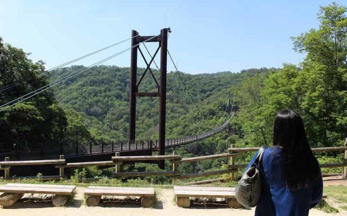 木床板人道吊り橋「星のブランコ」です。