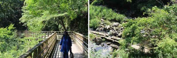 『森林鉄道風歩道橋』です。