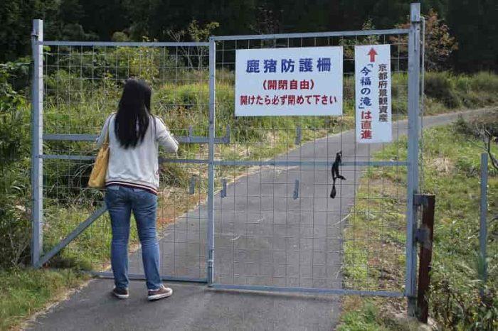 鹿猪防護柵を自ら開いて入ります。