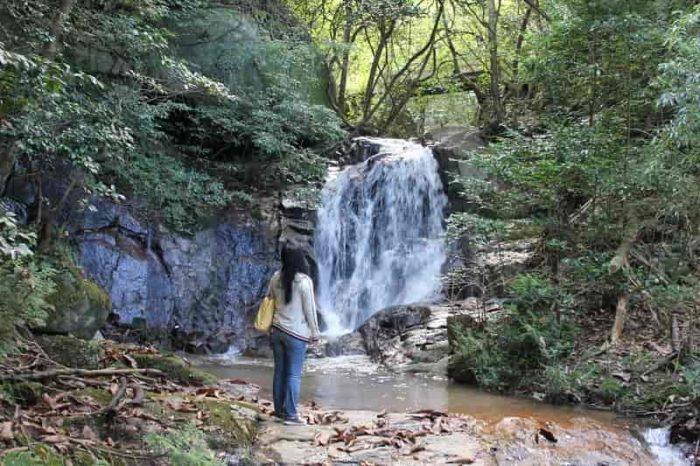 『1の滝』は5mぐらいの小さな滝です。