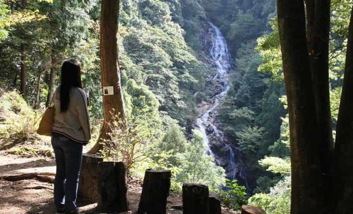 落差78.2mを誇る今福の滝です。