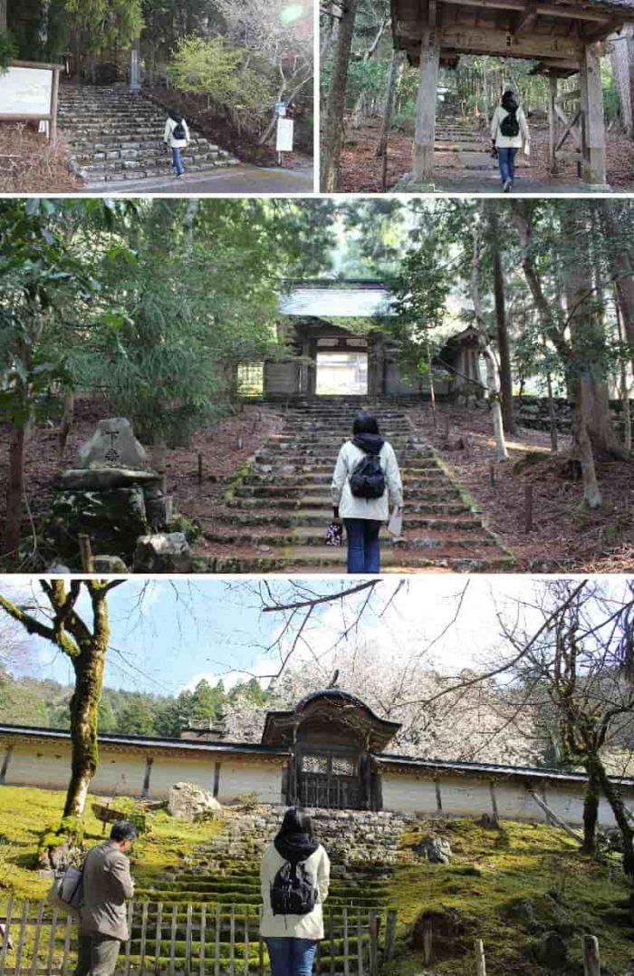 常照皇寺の参道の様子です。