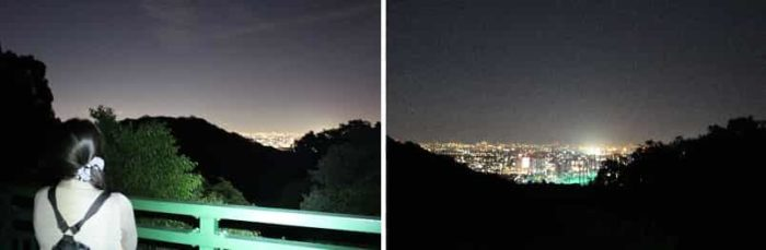 みどり橋より眺められる夜景です。
