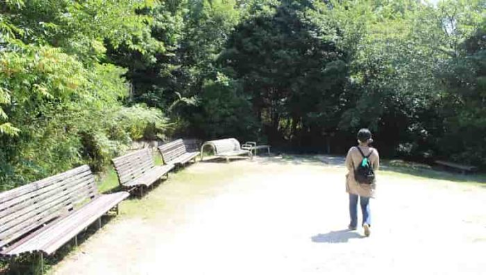 園内の見どころ『県民の森』です。