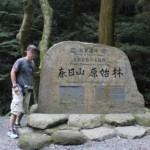 春日山原始林【ハイキング】大自然の姿そのままに【奈良奥山ドライブウェー】