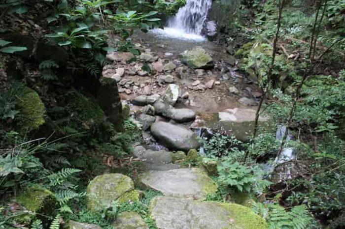 鶯の滝の滝壺に続く道です。
