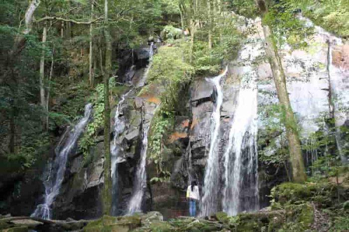 日本の滝100選「金引の滝」です。