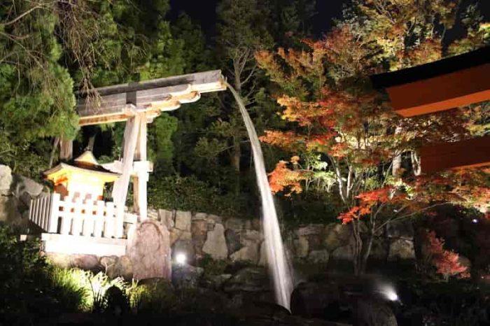 勢いのある滝もライトアップされています。
