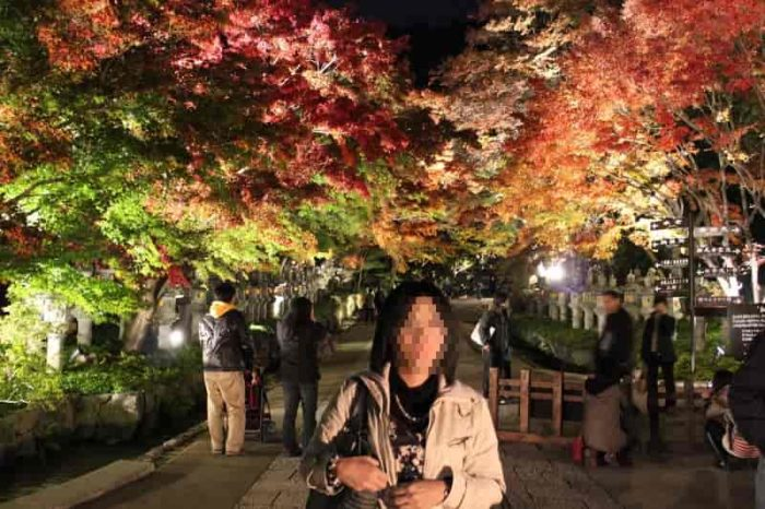 七色に輝く紅葉のトンネルです。