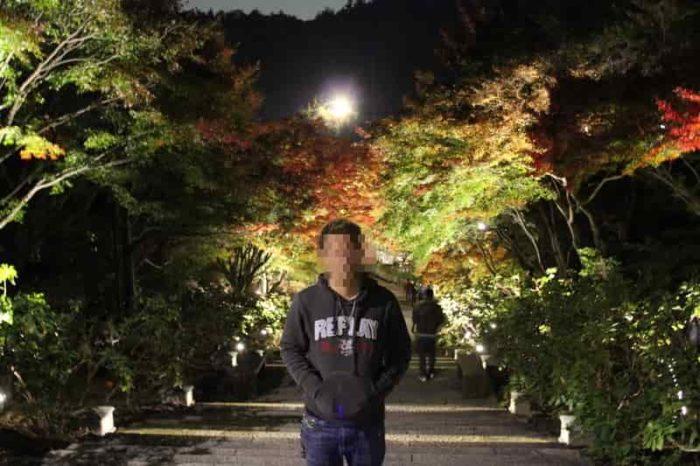 ライトアップされた紅葉の景色です。