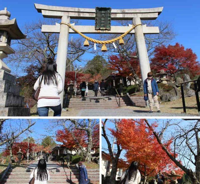 与志漏神社の参道を彩る紅葉です。