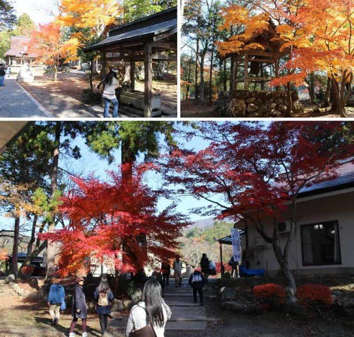 優れた景観を誇る与志漏神社の紅葉です。