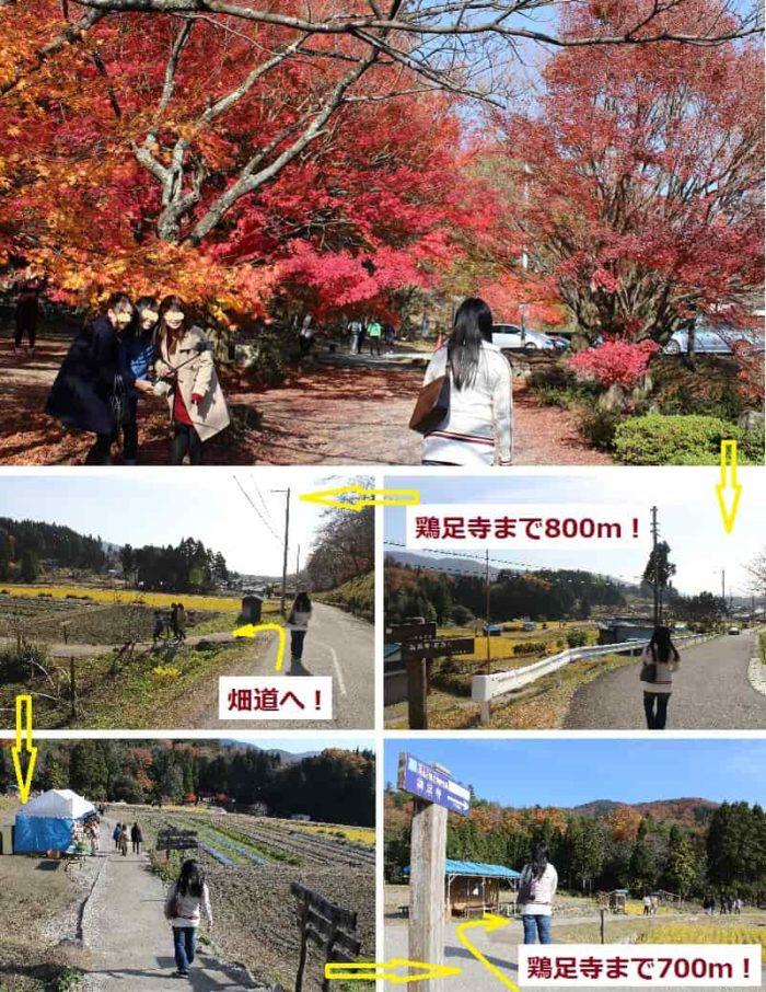 鶏足寺の紅葉観賞に移ります。