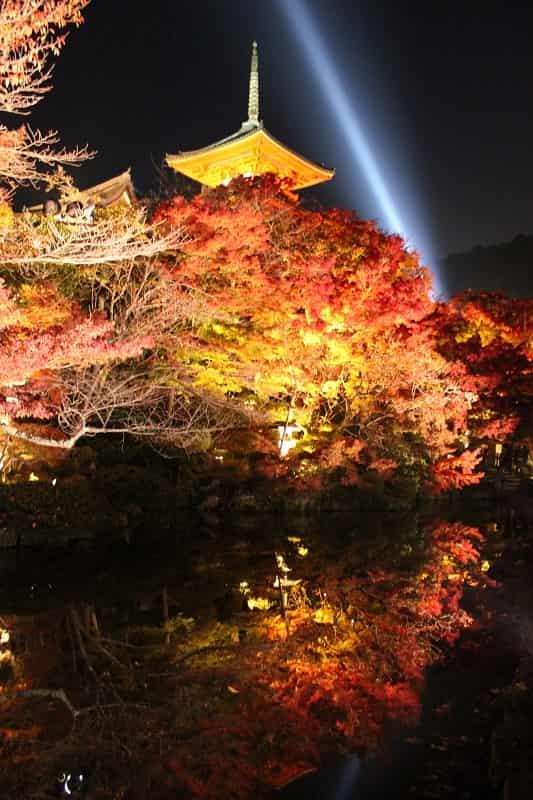 水鏡に映る色鮮やかな紅葉です。です