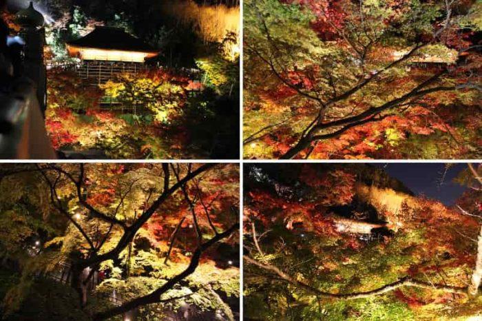清水の舞台から見る紅葉の景色です。