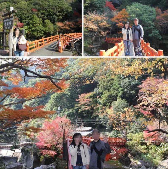 『滝見橋』の周辺の紅葉です。