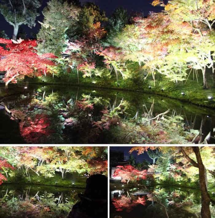 水鏡に映しだされる色鮮やかな紅葉です。