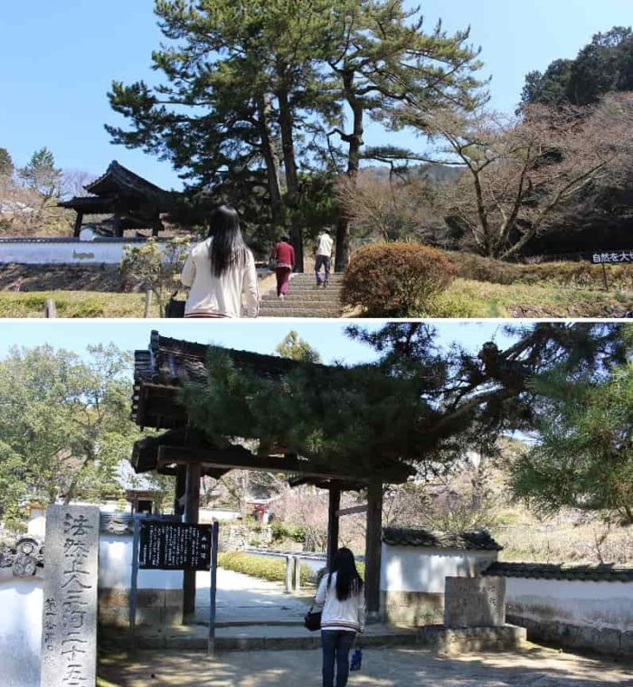 3代将軍「徳川家光」が建てた山門です。