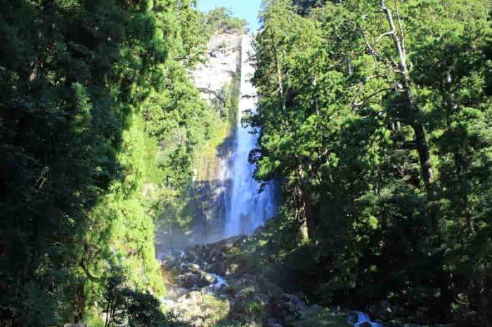 日本一の名瀑となる那智の滝です。