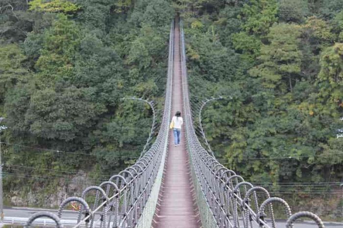 アーチを描くように伸びる黒滝吊橋