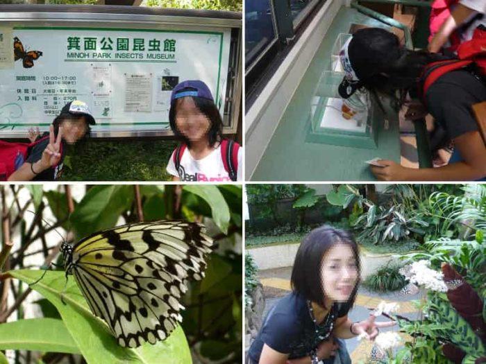 箕面公園の楽しみどころ箕面公園昆虫館です。
