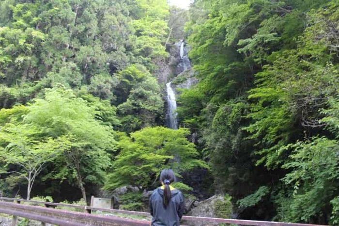 奈良県が誇る名瀑「宮の滝」です。