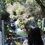 水間寺【恋人の聖地】『お夏・清十郎』身分の違いを乗り越えて・・【御朱印】