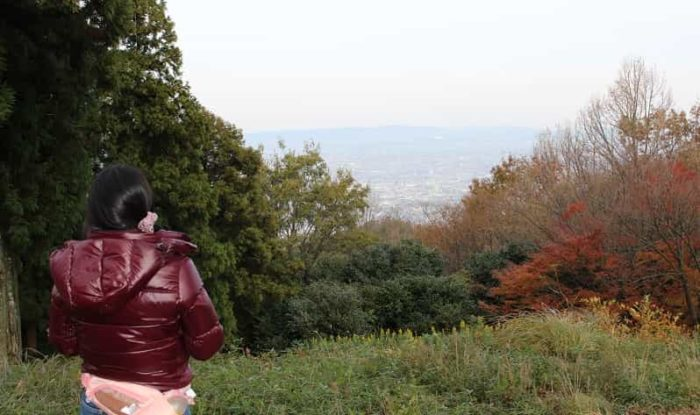 芝生の展望広場から眺める景色です