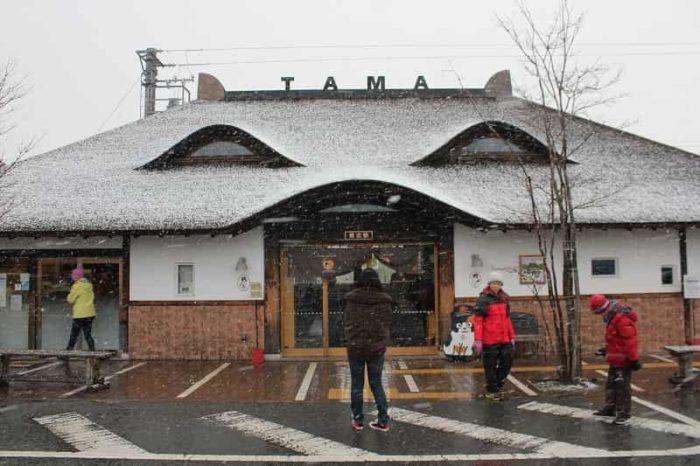 和歌山電鐵の貴志川線の貴志駅です。
