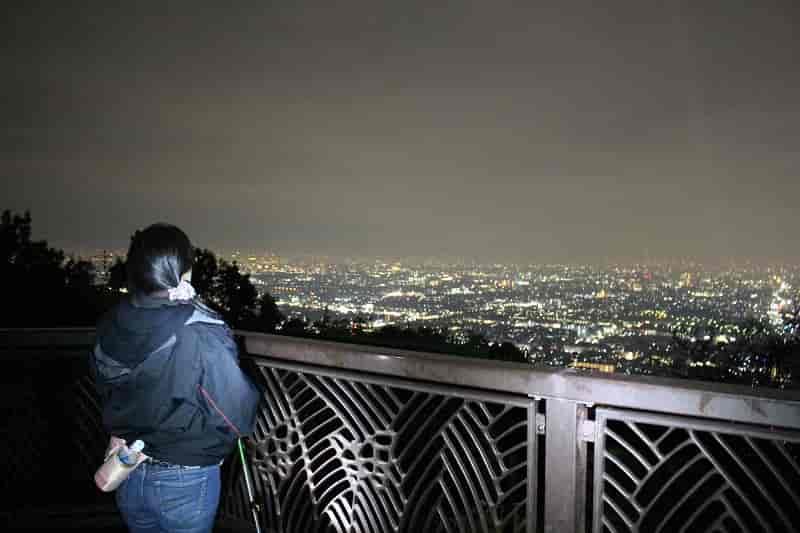 額田山展望台から眺めた夜景です。