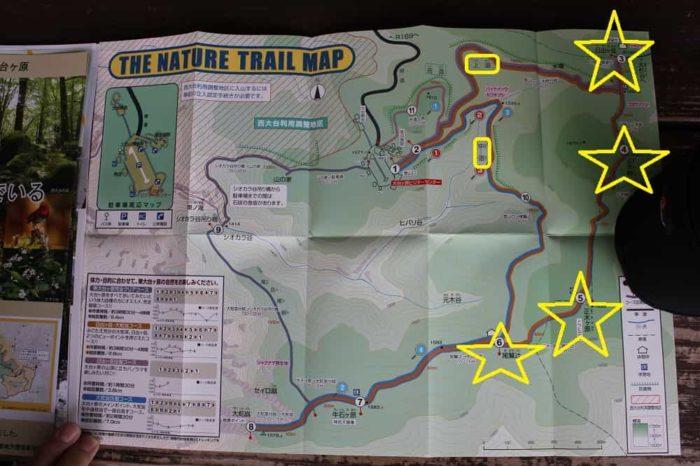 大台ケ原のハイキングマップです。