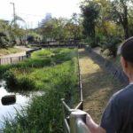 大浜公園の南砲台場跡です。