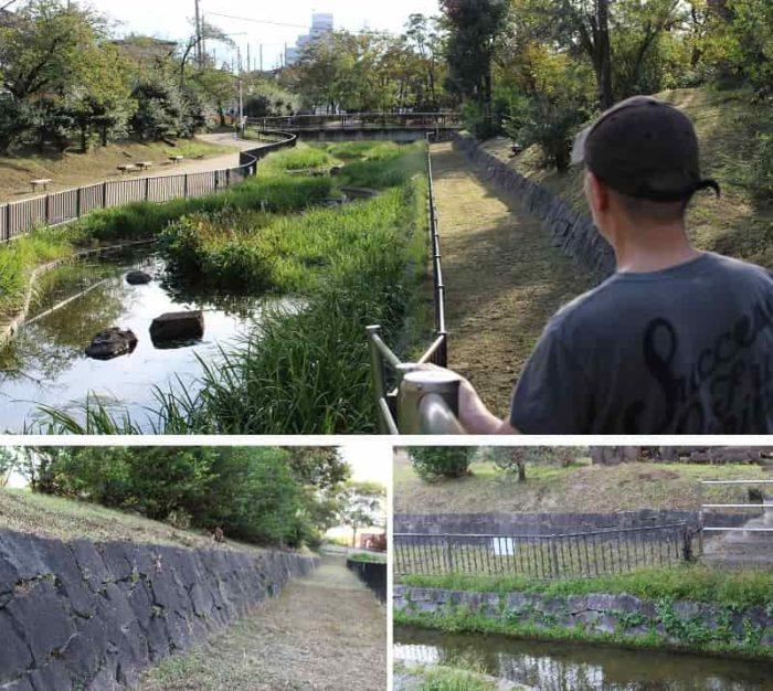 南砲台場跡に整備された花菖蒲園です。