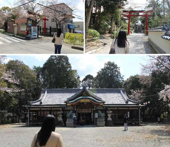 日根神社の参道より本殿に進みます。