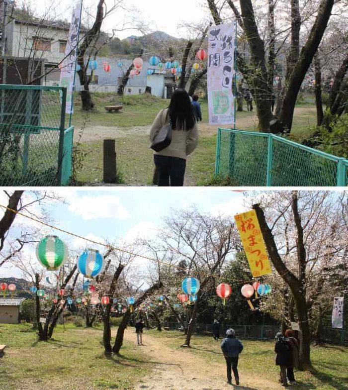大井関桜まつりのイベント会場です。